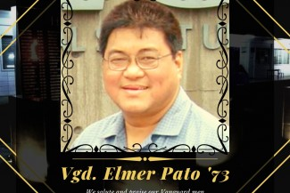 vgd-elmer-pato-73